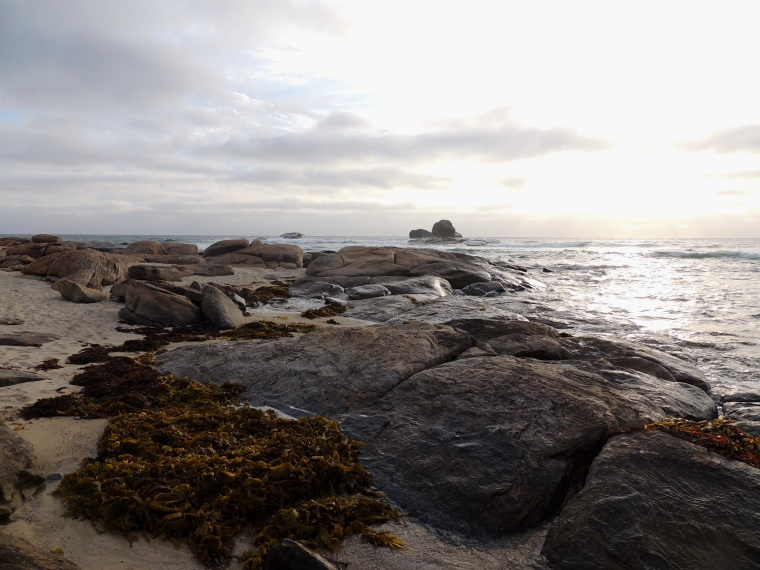 As I look out from the rocks to the ocean I feel when I visualise that rock in the middle of the ocean as my starting point to create the new I feel the many feelings that need releasing to reach that definite start point when I am feeling solid and knowing in my direction. I know theres not a lot there but gees it feels like there is!
